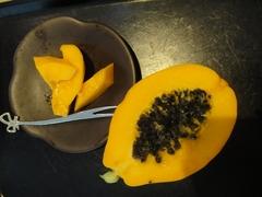 温室の新たな収穫