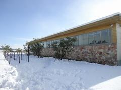 大里ラボラトリーガーデンの冬景色