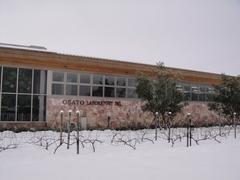雪に包まれた大里ラボラトリー